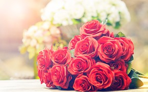 Picture flowers, bouquet, Roses, red roses