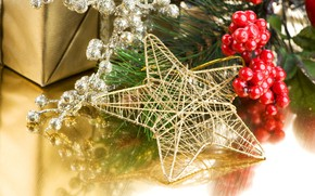 Picture holiday, gift, star, new year, branch berries, pine branch