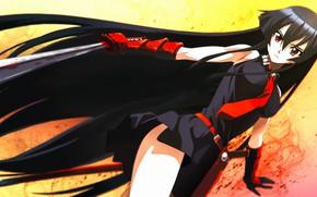 Picture blood, anime, katana, akame, akame ga kill