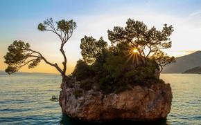 Picture sea, the sky, the sun, trees, rock, coast, Bay, Croatia, Brela