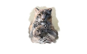 Picture baby, family, leopards