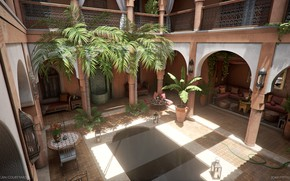 Picture comfort, palm trees, yard, decoration, Moroccan Courtyard