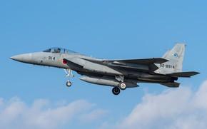 Picture Mitsubishi, the rise, BBC Japan, F-15J