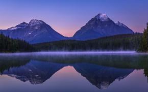 Picture forest, sunset, mountains, lake, reflection, tops, Canada, Albert, Alberta, Canada, Jasper National Park, Jasper national …