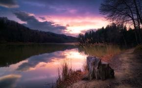 Picture sunset, lake, stump