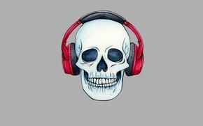 Picture skull, minimalism, head, headphones, skeleton, sake
