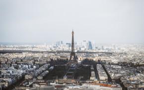 Picture the city, Paris, panorama
