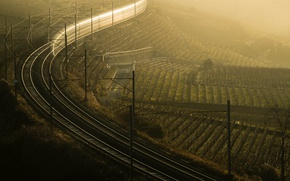 Picture fog, morning, railroad