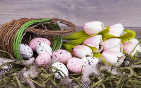 Picture flowers, Easter, tulips, basket, pink, flowers, tulips, spring, Easter, eggs, decoration, Happy, the painted eggs
