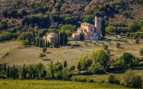 Wallpaper field, Italy, home, trees, Tuscany, The Abbey of Sant'antimo, hills, the sun, grass