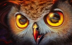 Picture space, owl, by exobiology