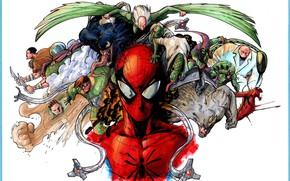 Picture art, comic, marvel, Scorpion, Marvel Comics, Spider-Man, Venom, Carnage, Spider-Man, Vulture, Green Goblin, Rhino, Kingpin, …