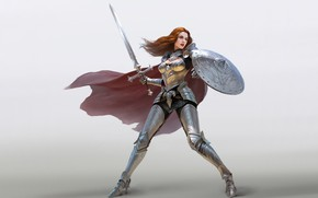 Picture girl, hair, armor, warrior, Sword, shield