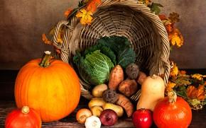 Wallpaper bow, autumn, basket, garlic, yellow, pumpkin, leaves, cabbage, garnet, potatoes, vegetables, table, carrots