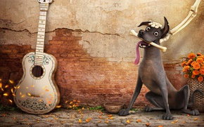 Wallpaper Coco, animated film, dog, happy, animated movie, Mexico, bones
