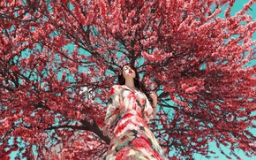 Picture face, tree, model, dress, flowering