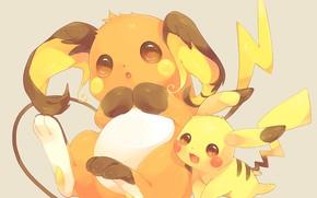 Picture Pokemon, Pikachu, The Rajcza