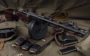 Picture weapons, weapon, unloading, stores, gun machine gun, PCA, TT, PPSH, holster the gun