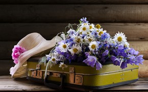 Picture chamomile, hat, suitcase, bells, forget-me-nots