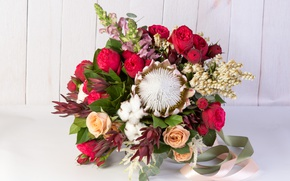 Picture roses, cotton, snapdragons, Proteus