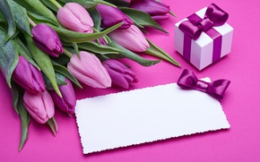 Wallpaper fresh, pink, love, bow, romantic, pink, gift, tulips, tulips, purple, bouquet, flowers
