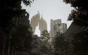 Picture trees, the city, building, destruction, ruins, Post Apocalyptic Sanctuary