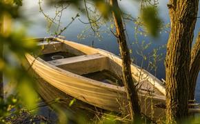 Wallpaper river, boat, trees