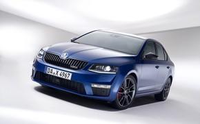 Picture blue, background, sedan, Skoda, 2013, Skoda, Octavia RS, four-door