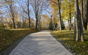 Picture Autumn, Trees, Park, Russia, Fall, Track, Russia, Park, Autumn, Road, Trees