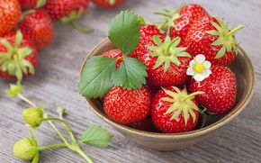 Picture table, tree, strawberry, berry, Cup, Red