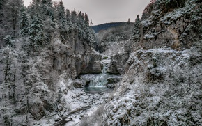 Picture winter, forest, river, waterfall