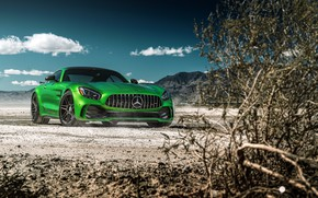 Picture the sky, nature, green, style, the bushes, the front, Mercedes GTR