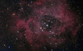 Picture Unicorn, in the constellation, The Rosette Nebula