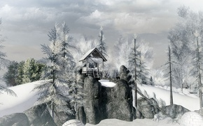 Picture winter, forest, trees, rocks, house, surreal