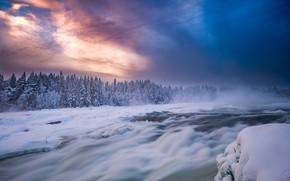 Wallpaper forest, river, the sky, Sweden, thresholds, The Storforsen Rapids Rapids, Norrbotten, River Pitealven, Norrbotten County, ...