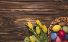 Picture flowers, holiday, eggs, Easter, socket, tulips