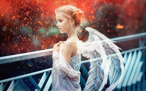 Picture wings, angel, sparks, girl, bokeh