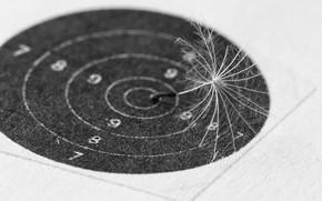 Picture background, dandelion, fluff, target