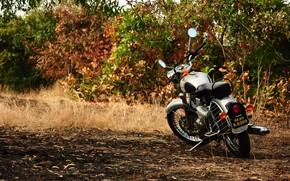 Picture nature, technique, motorcycle