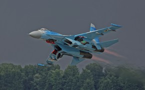 Wallpaper forest, Su-27 Flanker, combat aircraft, the rise