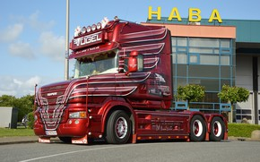 Picture Scania, T 580, bird