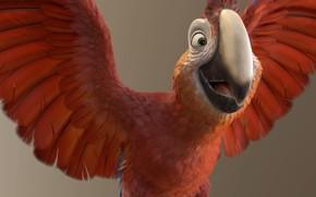 Picture mood, art, parrot, flight, Yannick Vincent, Tuesday // Robinsson Crusoe