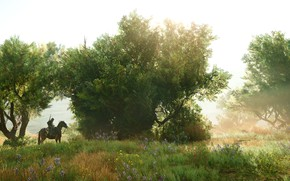 Picture summer, nature, rider, Assassin's Creed Origins