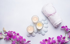Picture flowers, stones, candles, orchids, Spa
