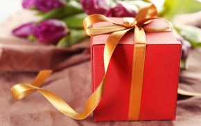 Picture gift, bouquet, tape, tulips, love, flowers, romantic, tulips, gift