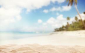 Picture sand, palm trees, blur, blur