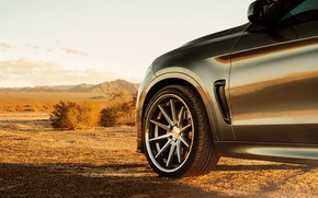 Picture design, wheel, disk, BMW X6M