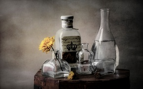 Picture flower, glass, bottle, dishes, still life, decanter
