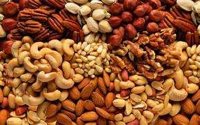 Picture nuts, almonds, hazelnuts, cuts, cashews