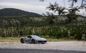Picture ferrari, Ferrari, GTB, 488